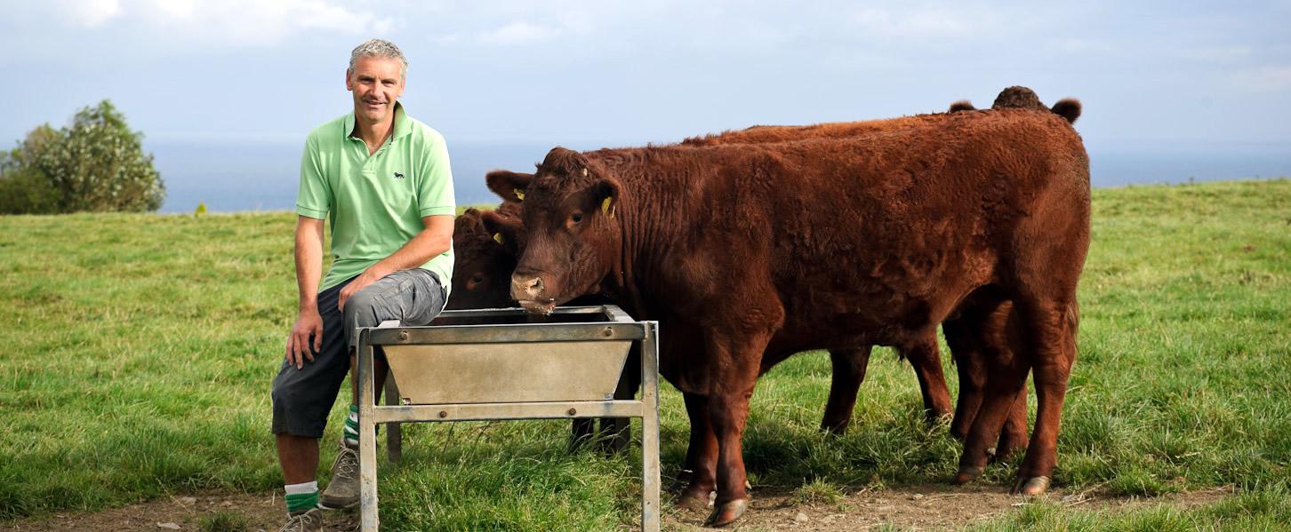 Boscastle Farm Shop Cornwall